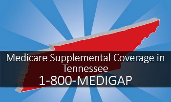 Medicare Supplemental Cover...